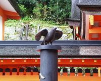 Fuyucamera_045_1