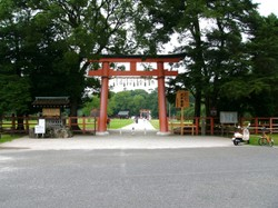 Fuyucamera_0772