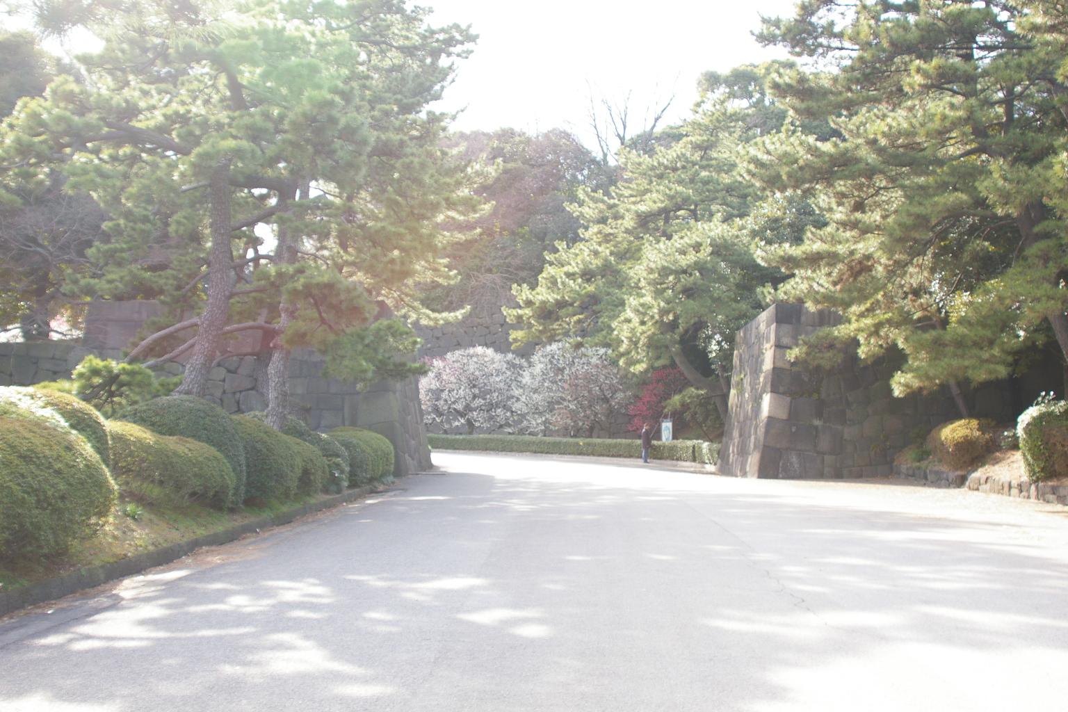 Fuyucamera_042